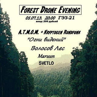 Forest Drone Evening